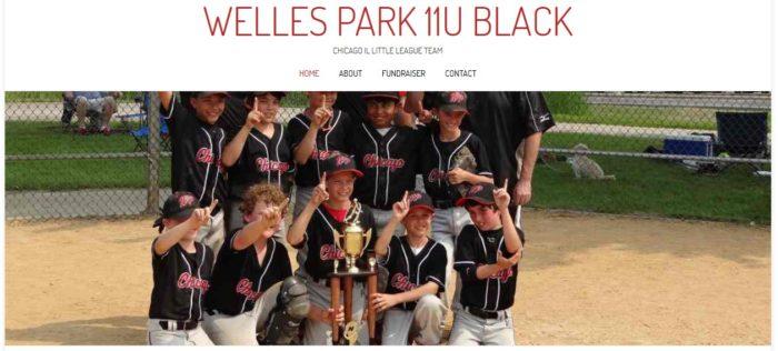 Welles Park 11U Black